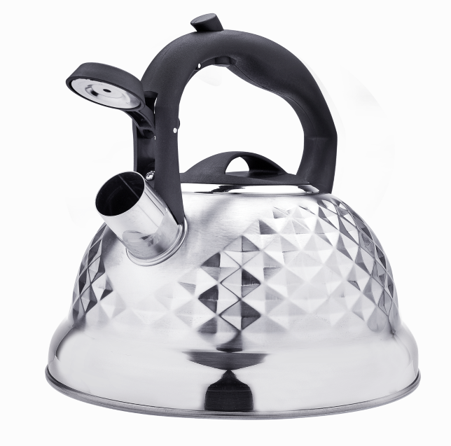 Stainless Steel Tea Kettle Fh 476