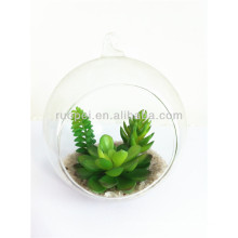 Beautiful artificial mini succulent plant with glass pot