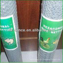 3/8 pulgada galvanizada sumergida caliente Gallinero de red de alambre de aves de corral