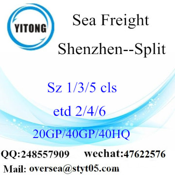 Shenzhen Port Sea Freight Shipping Para Split
