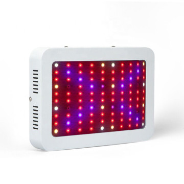 Led 600w coltiva la luce UK US EU