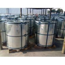 Steel Coil/PPGI Steel Coil/PPGI