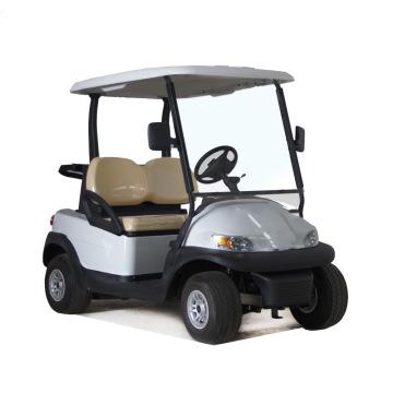 Vehículos eléctricos de uso turístico con control remoto 48V a batería para todo clima