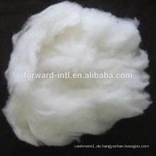 Direktverkauf Kaschmir-Faser-Fabrik mit guter Länge