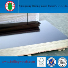 Combi Core Concrete Formwork Plywood for Construction Use