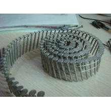 High Quality Coil Nails for Construction