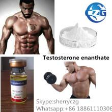 Testosterona Enanthate da hormona esteróide do suplemento ao halterofilismo de Te