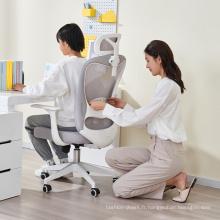 mobilier de bureau chaises chaise ergonomique bureau