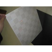 Heißer Transfer PVC Dekoration Panel (HT002)
