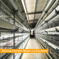 poultry farm house design automatic broiler chiken cage