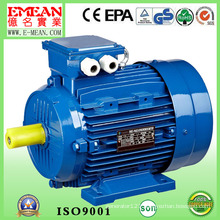 Y4 Series Three Phase Cast Iron Electric Motor