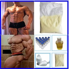 Bodybuilding Steroid Hormone 7-Keto-Dehydroepiandrosteron 7-Keto CAS 566-19-8
