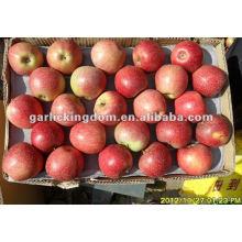 138-198 20kg Qinguan Apple