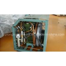 Compressor do mergulho autónomo do compressor de alta pressão compressor do paintball (BV-100)