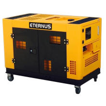 Industrial 10kVA Diesel Electric Generator (BM12T)