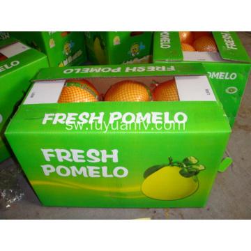 Fresh sweet tamu pomelo