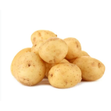 2020 Crop Fresh Holland Potato