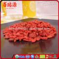 Dried fruit goji berry dried goji berry siyah goji berry Sulfur Free