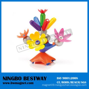 3D Plastic Educational Puzzle Smartrod Magnetic Toy