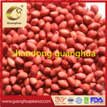 Best Quality Healthy New Crop Special Hot Sale Red Skin Peanut Kernels