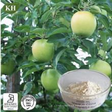 Ingrediente cosmético natural Phloretin 98% Extracto de raíz de manzana