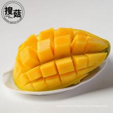 Instant Best Price of Freeze Dried Mango/ Freeze Dried Mango Chips in Bulk