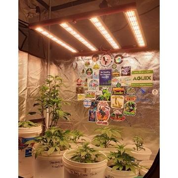 Hosehold Small Gradation 240w LED élèvent des lumières