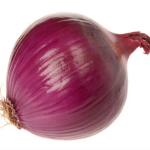 New Crop Chinese Onion For Wholesale Top Grade Healthy And Natural Onion