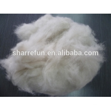 China Fabrik Dehaired Fox Wolle 16.0mic 26-28mm