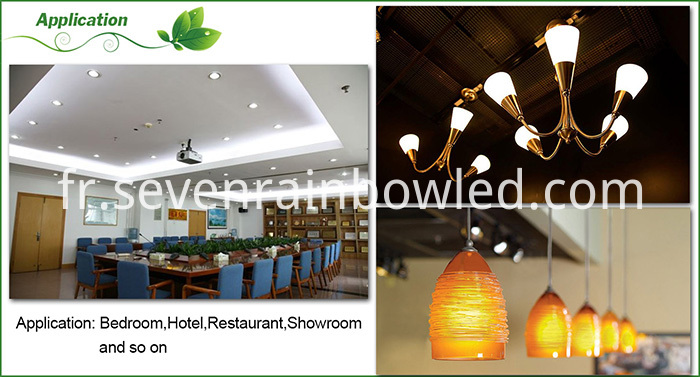 Application of LED corn lamp