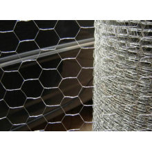 "2"" Galvanized Hexagonal Wire Mesh"
