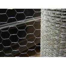 """2"""" Galvanized Hexagonal Wire Mesh"""