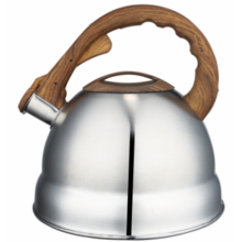 2.5L tea kettle with temperature control
