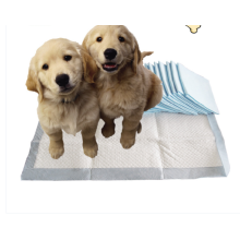 New Design Pet Puppy PEE Training Pads