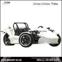 EEC 250cc/300cc Zongshen Engine Trike Adult Tricycle Ztr Trike