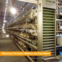 Птицы куриное яйцо слой клетки батареи для большой птицефермы