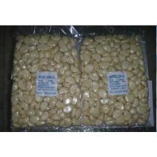 Fresh Peeled Garlic with Vaccume Bag