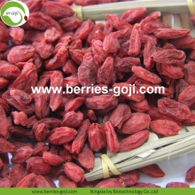 Anti Age Nutrition Fruit Natural Común Goji Berry
