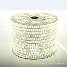 High Brightness 2835 smd led strip light waterproof 110V/220V