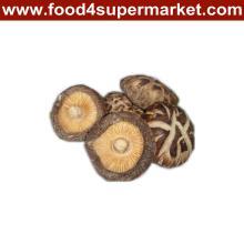 Dried Mushroom 1kg