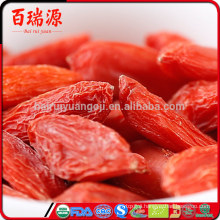2016 new harvest can goji berries raise blood pressure goji berries side effects goji berries supplements helps to reduce weight