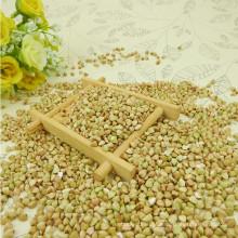 Venda quente doce trigo mourisco 2012