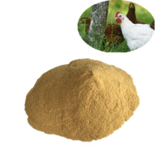 Poudre de levure 60% Additifs alimentaires pour aliments