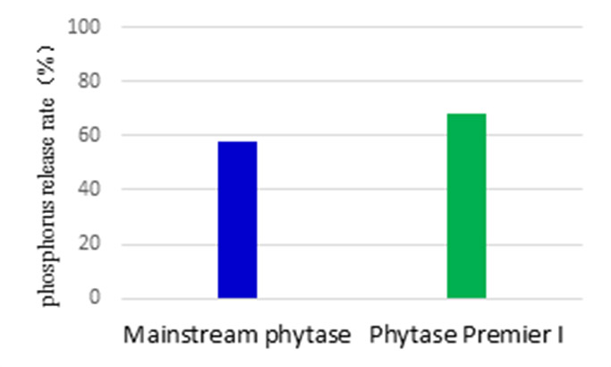feed-Nutrizyme PHY-P-15