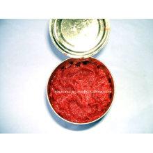 100% Pure Tomato Paste (HACCP, ISO, BRC)