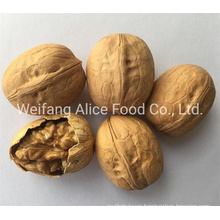 Wholesale New Crop Size 28mm/30mm/32mm up Easy Cracked Walnut in Shell