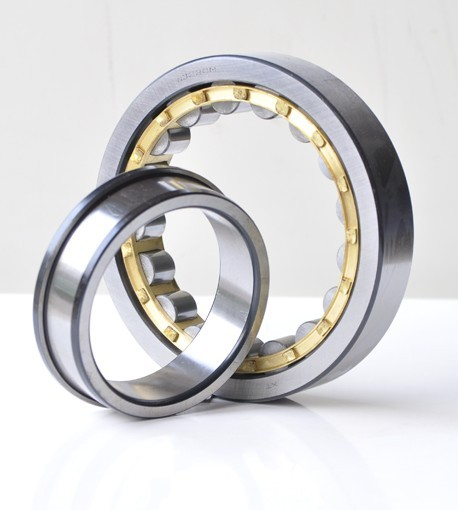 Single Row Roller Bearings NF300 Series
