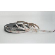 DC24V 70LEDs/M Constant Current Samsung 5630 Flexible LED Strip