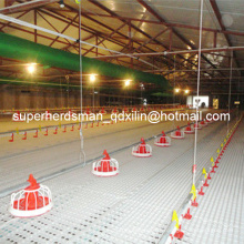 Complete Set Automatic Poultry Farm Equipment for Broiler Production