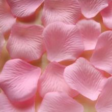 Flores de pétalo de rosa